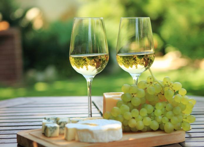 illustration vin blanc - Restaurant Thézan-Lès-Béziers - La carte Timbré